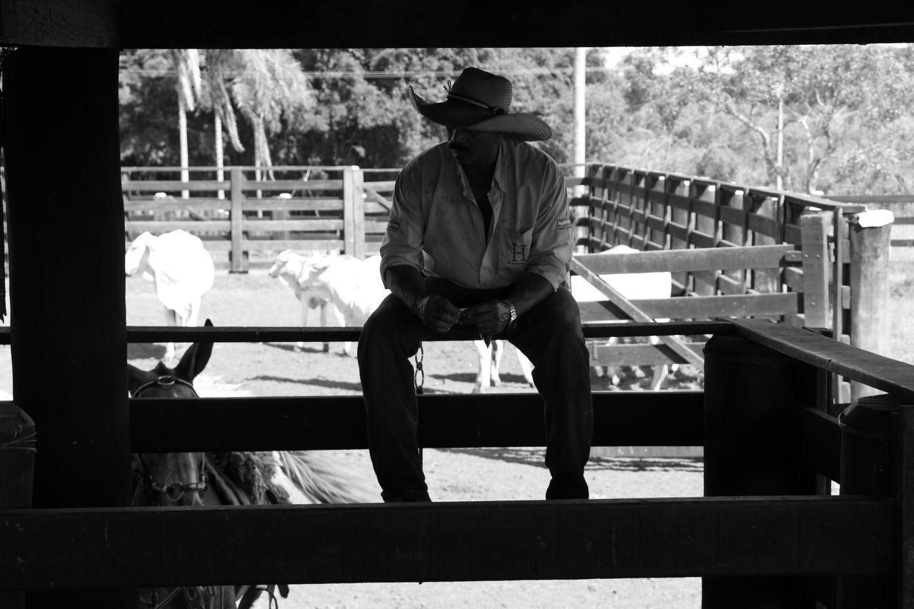 Smoke Smoking Cowboys Neloregado Cowboy Photographer Neloreforever EyeEmNewHere Week On Eyeem Farm Life The Week On EyeEem First Eyeem Photo WeekOnEyeEm Rural Scene Out Of The Box Live For The Story Cowboy Style Cowboy Cowboy Hat The Portraitist - 2017 EyeEm Awards Blackandwhite Black & White The Great Outdoors - 2017 EyeEm Awards The Street Photographer - 2017 EyeEm Awards The Photojournalist - 2017 EyeEm Awards Place Of Heart