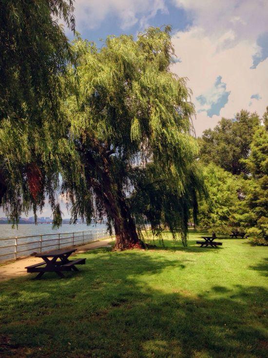 Urban Escape • Lunchtime Sanctuary in downtown Washington DC • Sanctuary  Picnic Island