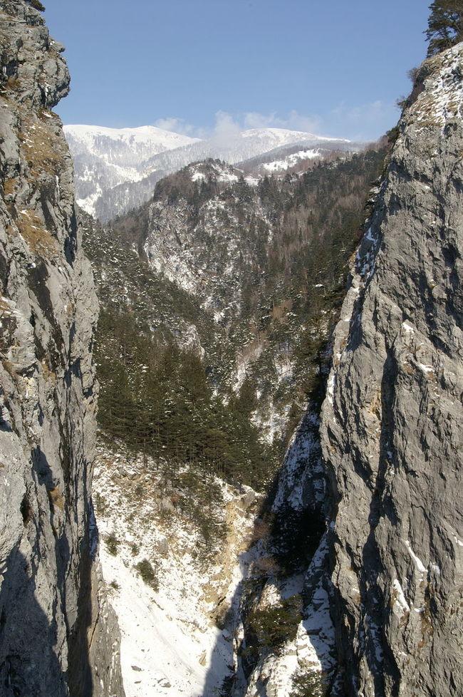 Feschelschlucht Alpen Beauty In Nature Berge Cold Temperature Deep Valley Gorge Idyllic Leuk Mountains Schlucht Schweiz Snow Switzerland Tranquil Scene Valley Wallis Winter