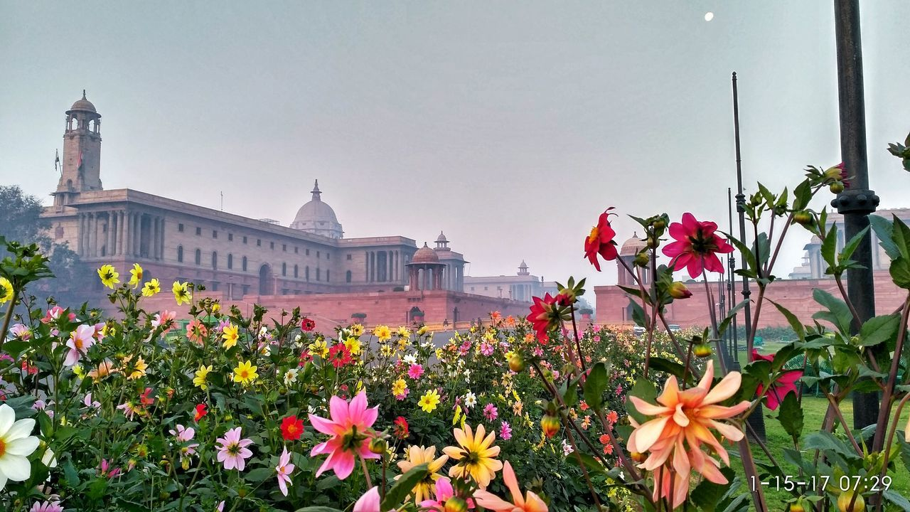 Flower City Red Plant Building Exterior Nature Government Sky No People Architecture Cityscape Beauty In Nature Outdoors Day Indianphotography Flowerphotography Prettybeautiful Beauty In Nature Indian Morning View Morning Delhite Delhidiaries Monument Delhiphotographers