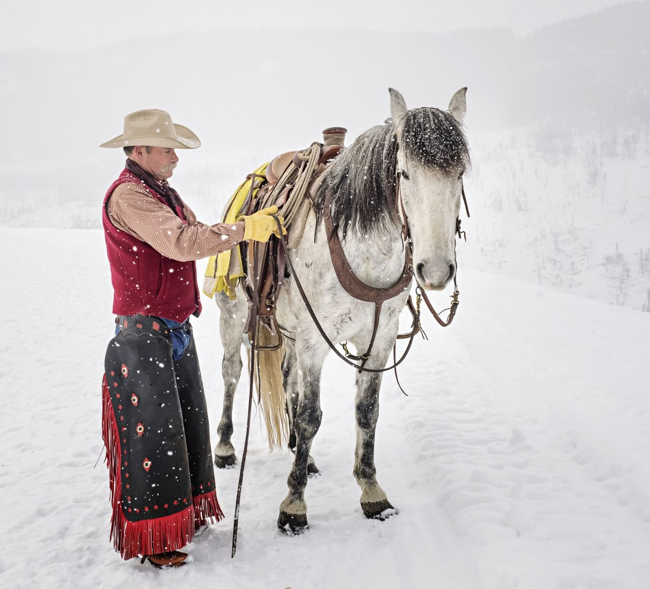 Beautiful stock photos of horse, 54-59 Years, Active Seniors, Animal Themes, Caucasian Ethnicity