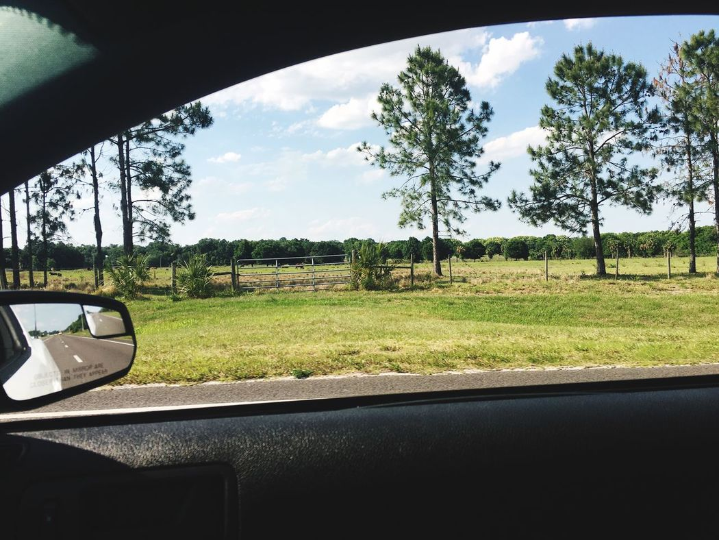 Florida Landscape Landscape_Collection Through The Window Passenger Seat View Roadtrippin' MeinAutomoment