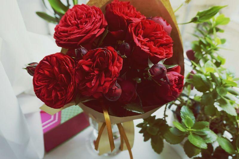 СЧАСТЬЕ просто! 🌹 цветы
