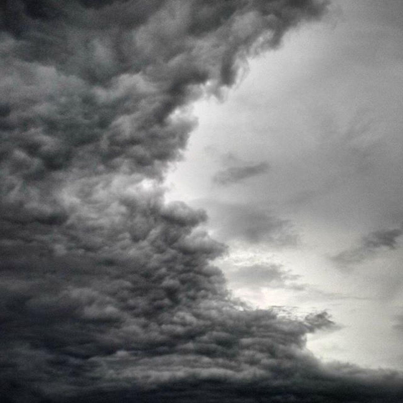 Над зелёной равниной дачной ветер тучи собирает. омск сибирь сибирскоелето небомореоблака тучиходятхмуро тучи Omsk Siberiansummer Siberia Skyseaclouds Overcast