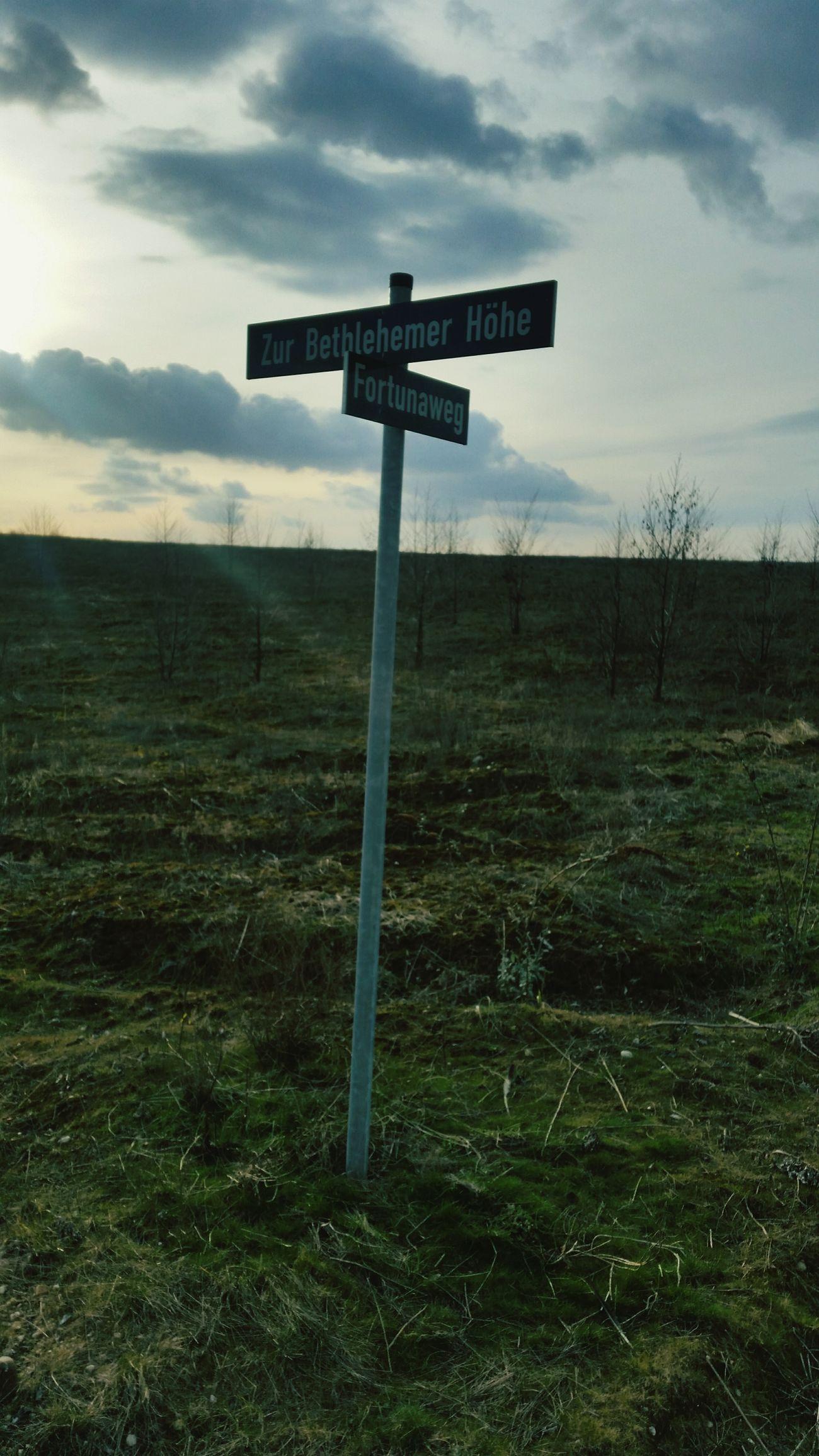 Ehemaliger Tagebau Fortuna Bergheim
