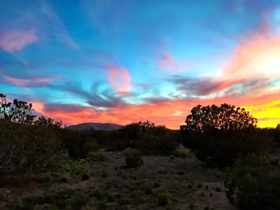 """""""Fire in The Sky"""" A blazing Central New Mexico sunset over the Gallinas Mountains on a Saturday evening. Sunset Sunset_collection Sunset Silhouettes Sunset And Clouds  Sunset Lovers Newmexicophotography Newmexico NewMexicoTRUE Newmexicoskies Clouds And Sky Mountains And Sky Nature's Diversities"""