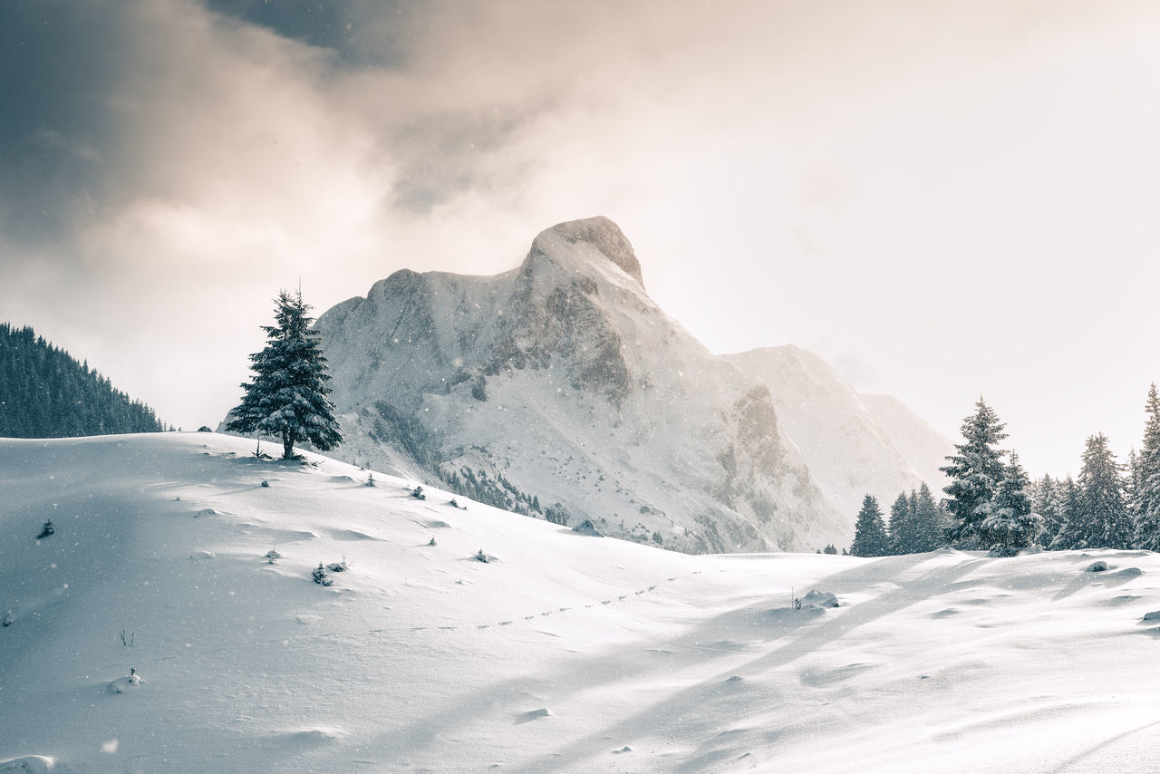 When amazing light meets snowfall Light Shine Snow ❄ beauty in Nature clouds cold temperature day gantrisch glow landscape mountain mountain range Nature no people outdoors scenics sky snow snowcapped mountain snowfall snowing switzerland tranquil scene Tranquility Winter