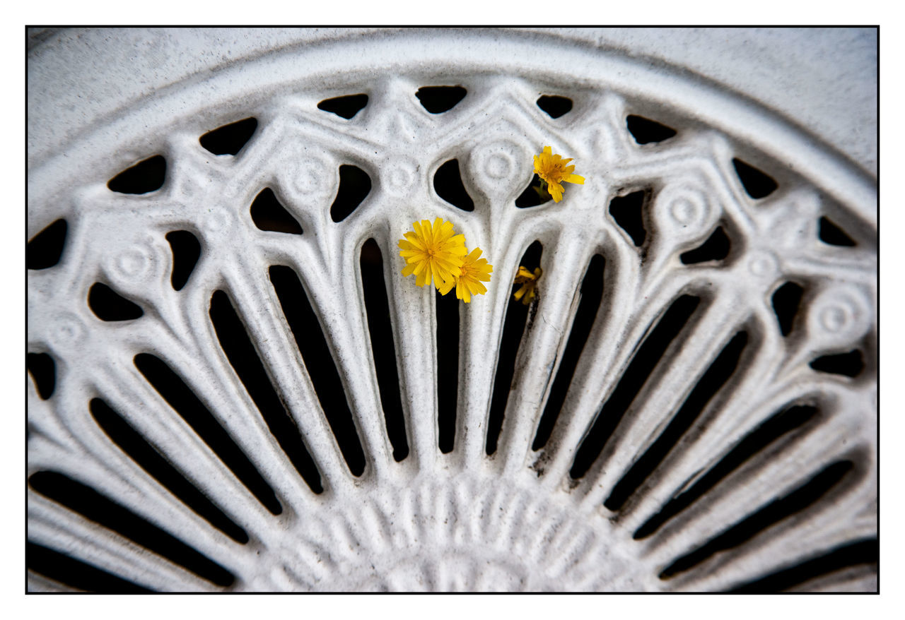 metal, close-up, pattern, flower, no people, outdoors, day