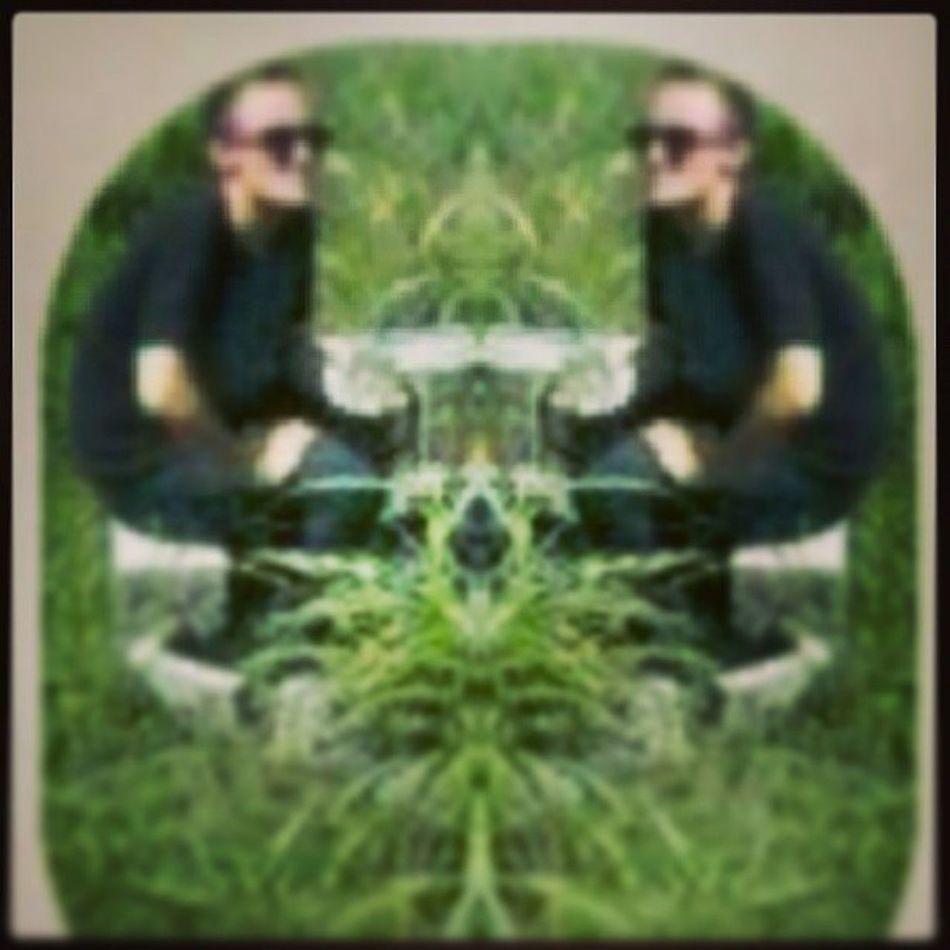 Talkin2Myself LonelyStonerShit Cannabisbook Thc smoked