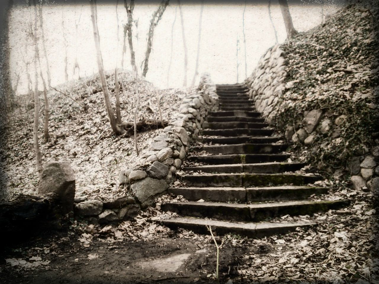 Outdoors Treppen Kalkberg Steps Steps And Stairs Day Sepia Sepia_collection Miles Away