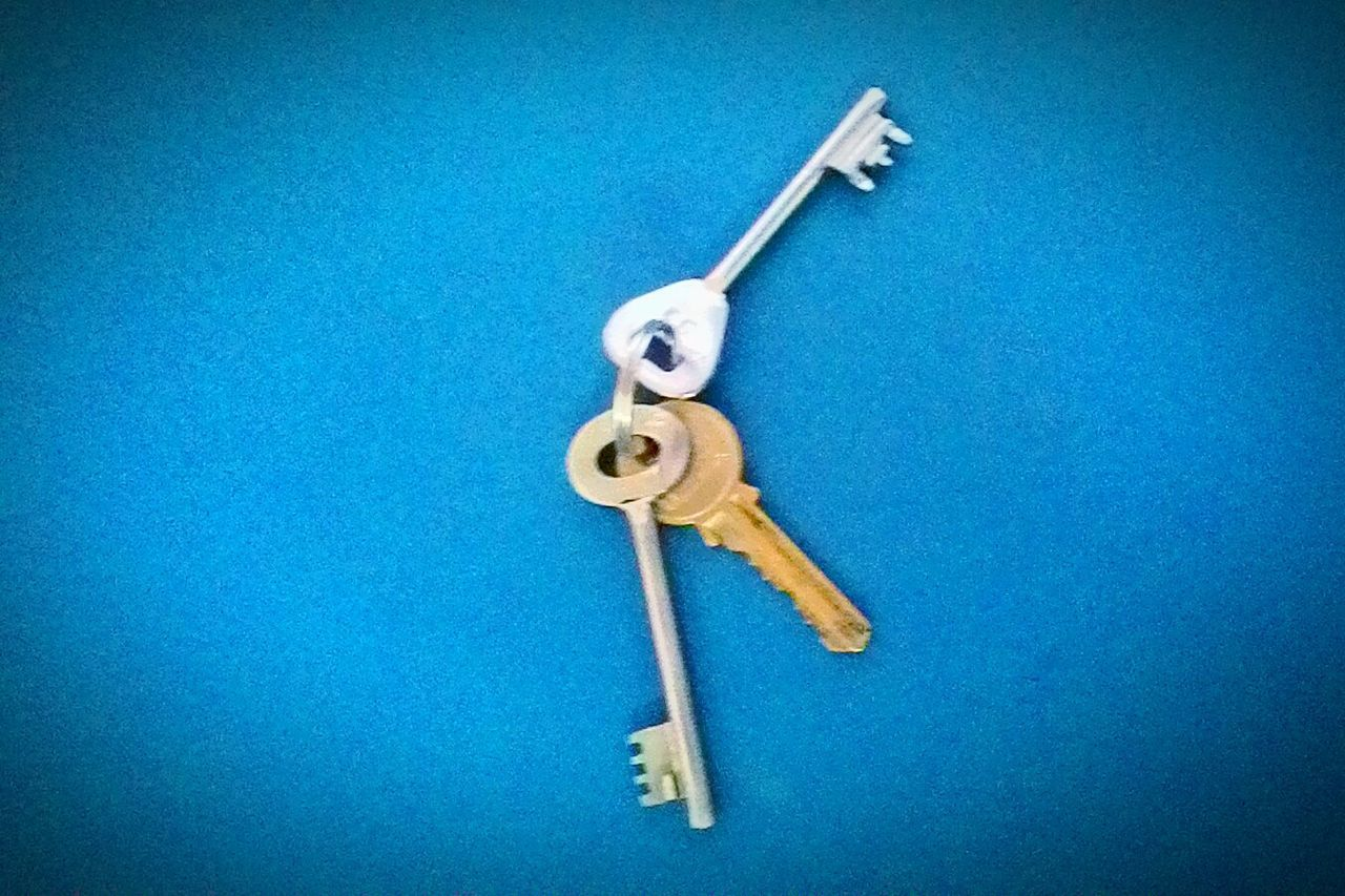 Color Of Business Key To Success Human Representation Man Made Object Symbol Creativity Blue JRPphotography Eyeem India Bussiness Start Up Key Of Life Convenience No People Bussinessanalyst Key Of The Day Keys Keys Of Life Key Of Mind Art Of Life