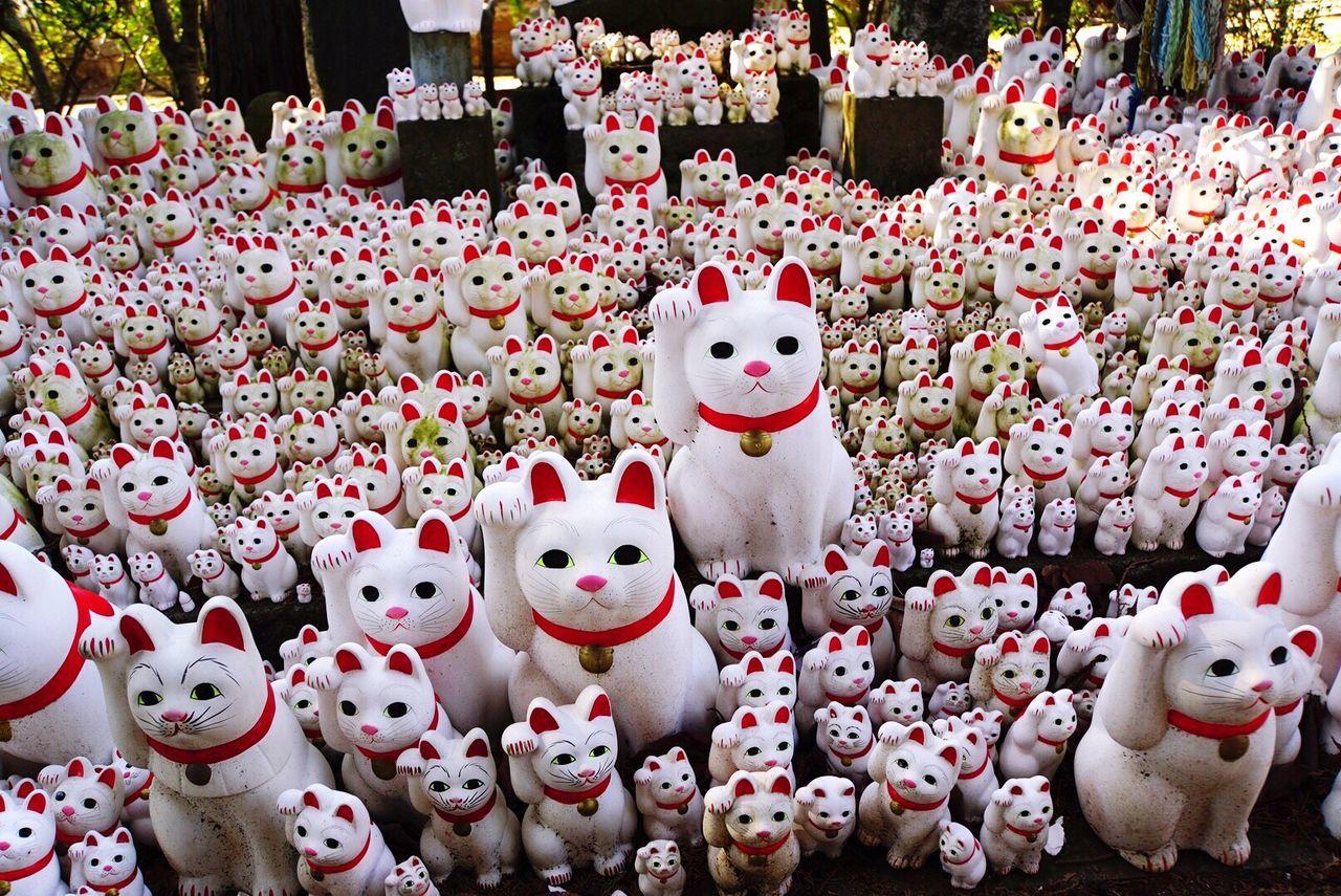 招き猫 No People Cat Lovers Cat Temple Japan Tokyo Gotokuji Tokyo,Japan Japan Photography 招き猫 豪徳寺