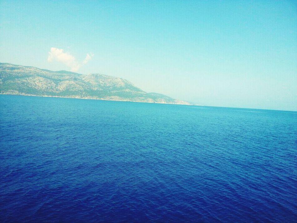 Sea Blues Checking In Turkey