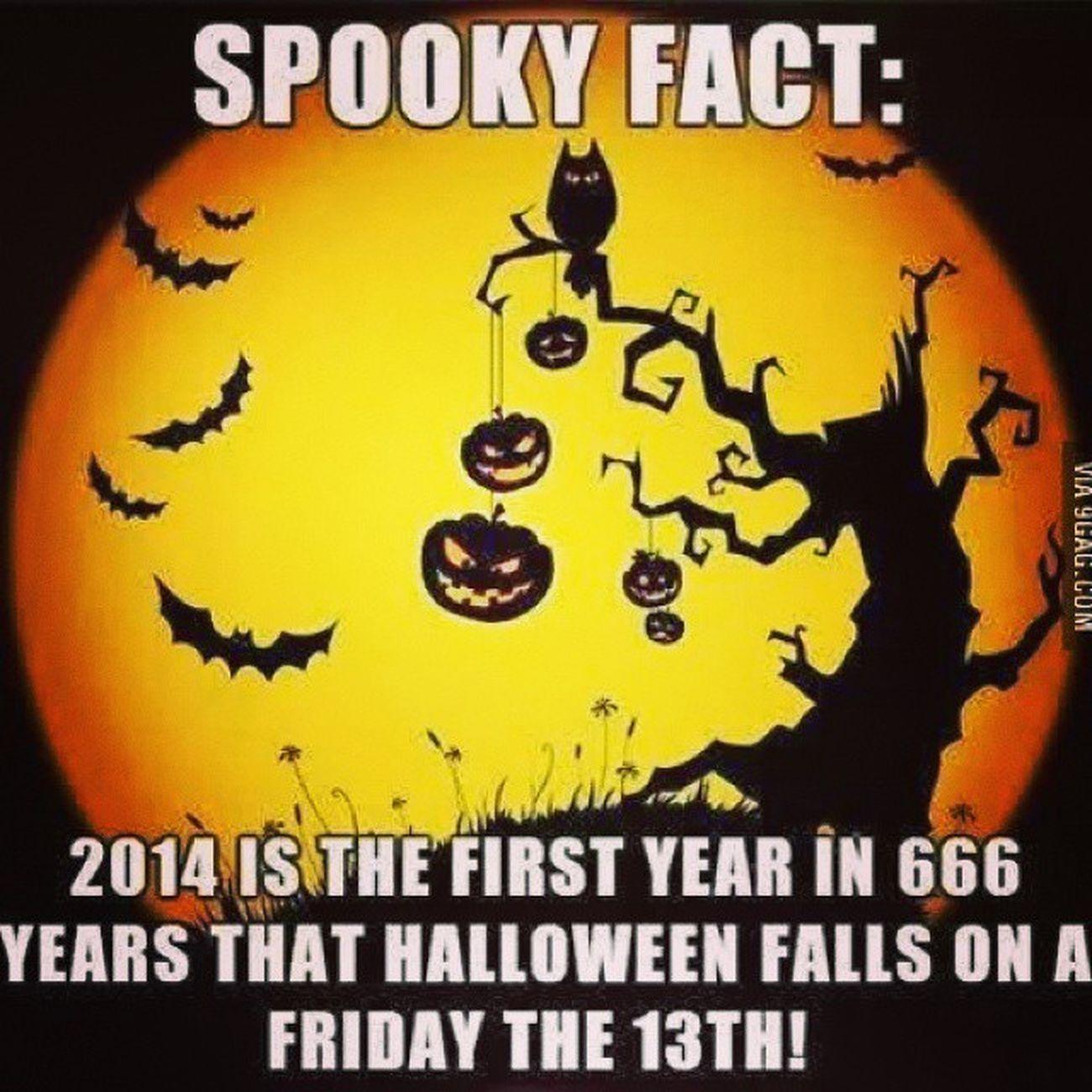 Coincidencia Estranha Nao  Vai haver halloween para mim