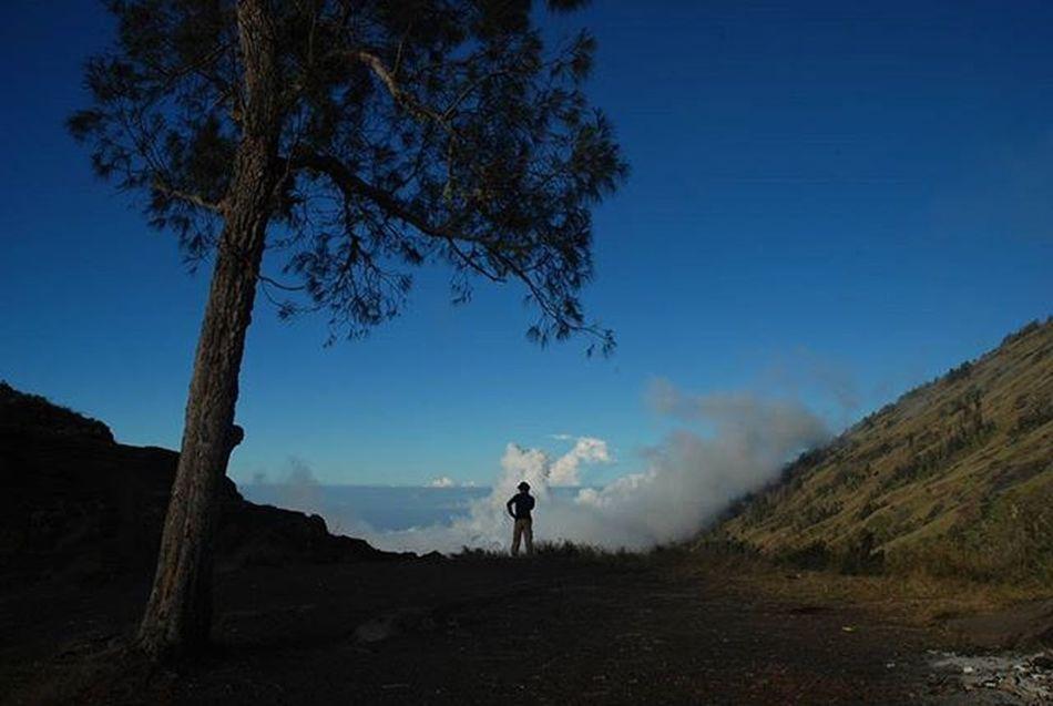 Sendiri aja,... . . Sore di plawangan sembalun, gunung rinjani Lombok NTB. 2008. . . . Nikon Sembalun Gunung Rinjani NTB Instagram Instalike Igers Travel Adventure Photo Mountains Hiking Igminimal Outdoors