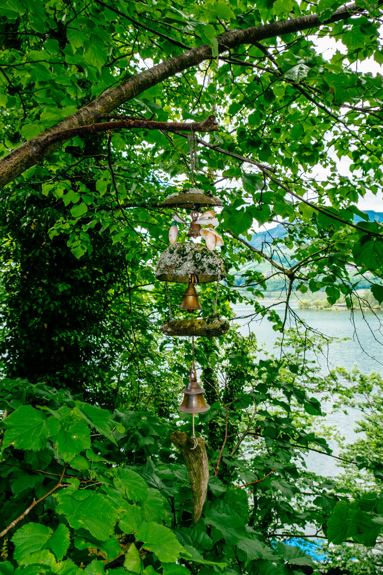 Beauty In Nature Branch Day Green Color Growth Human Representation Leaf Low Angle View Nature No People Outdoors Plant Sculpture Spirituality Statue Tree