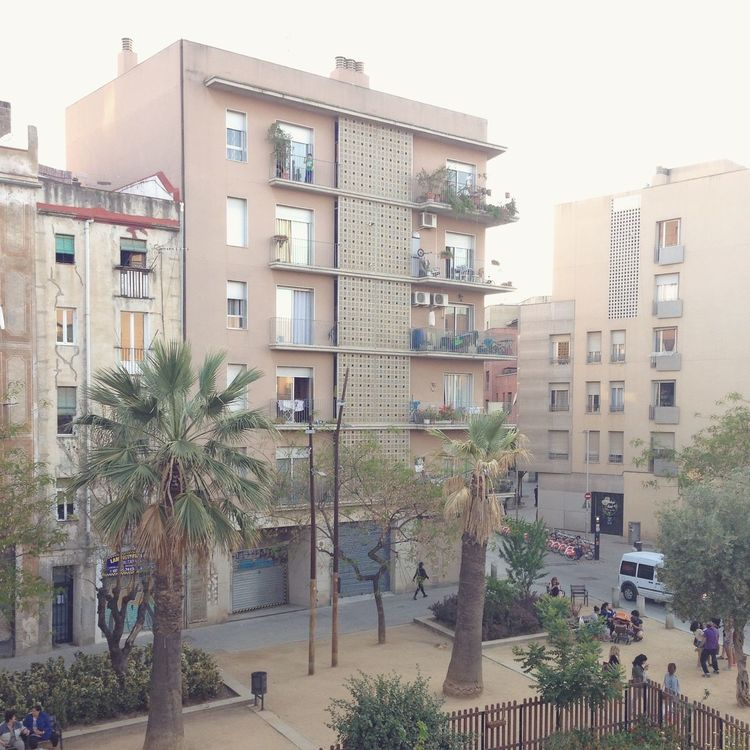 Against The Light Apartment Architecture Barcelonalove Bright Building Exterior Built Structure City City Life Cityscape Day Façade No People Outdoors Palm Tree Palm Tree Residential Building Sky Tree