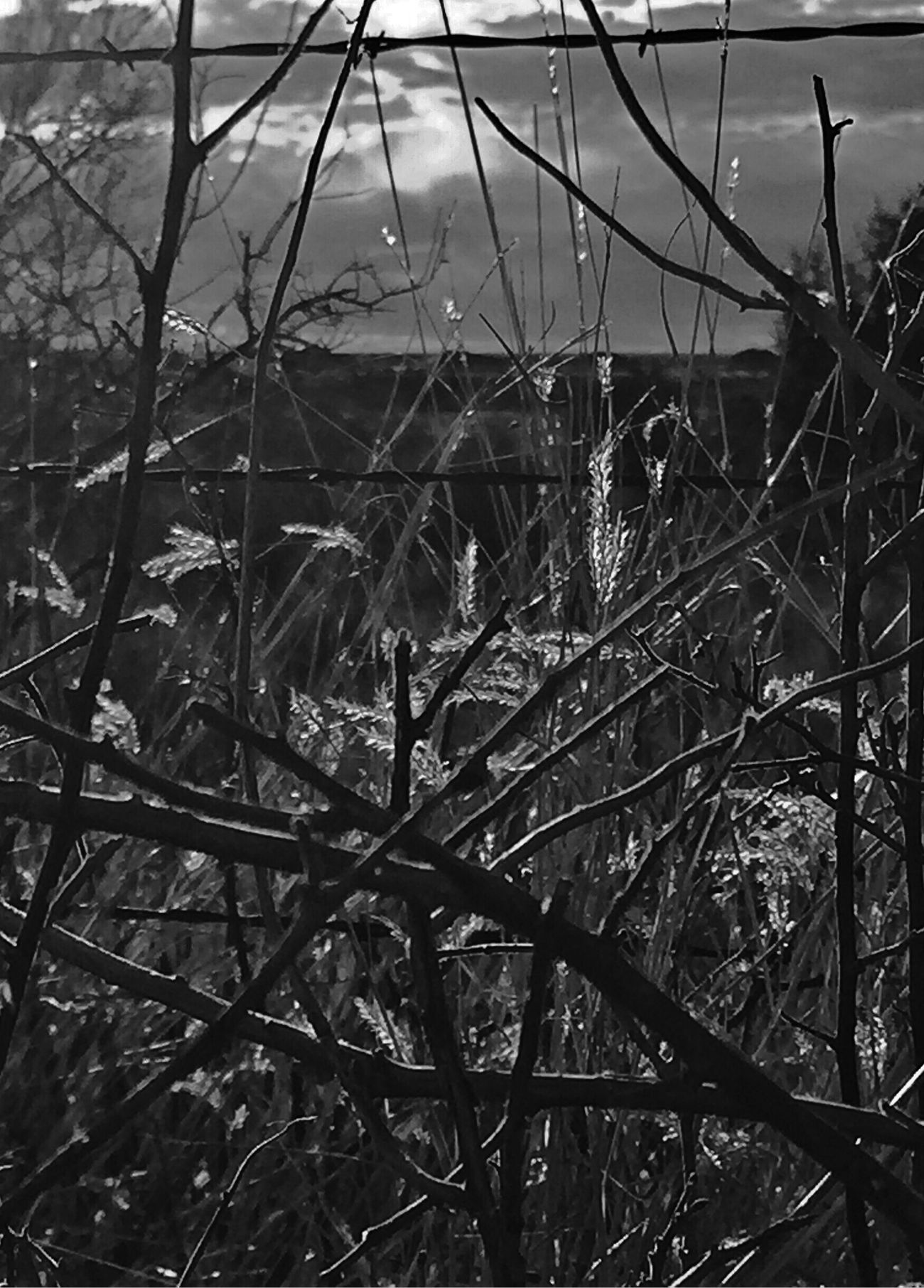 http://youtu.be/_bKfDOeePfo Light And Love Darkness And Light Naturelovers Untold Stories Landscape_Collection EyeEm Nature Lover EyeEm Music Lover Texas Panhandle We Own The Light Tadaa Community EyeEm Mood And Music Eye4photography  Bnw_collection Monochrome Fortheloveofblackandwhite Always :-)