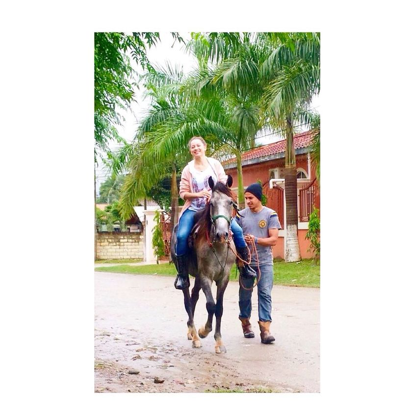 Horse and funny day ??? Quality Timeld] Quality time On The Road Enjoying Life