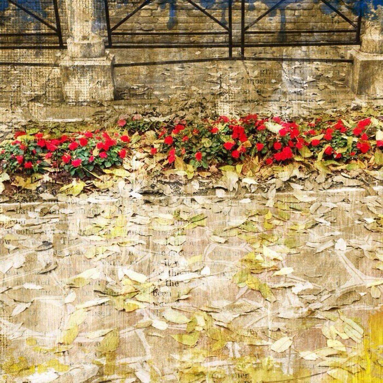 Autumn OctoberLove