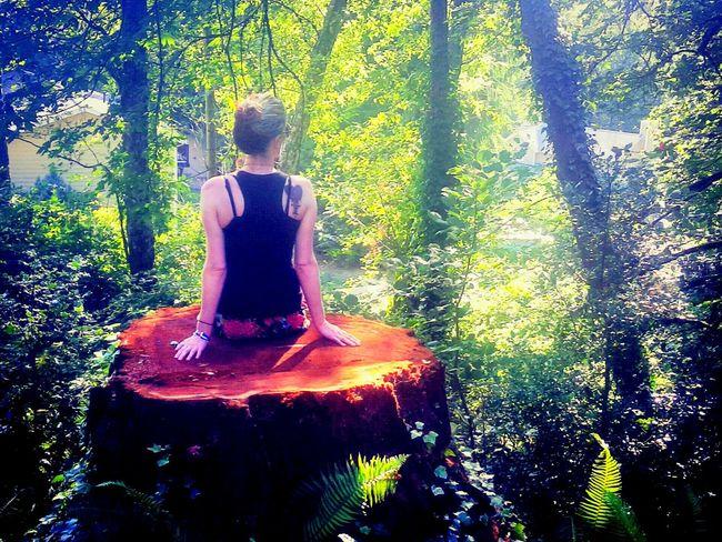 Girl in the Woods OpenEdit Lyssanicole Stump Tree Woods Wanderlust Explore Adventure Compass Nodirection Anywhere Everywhere