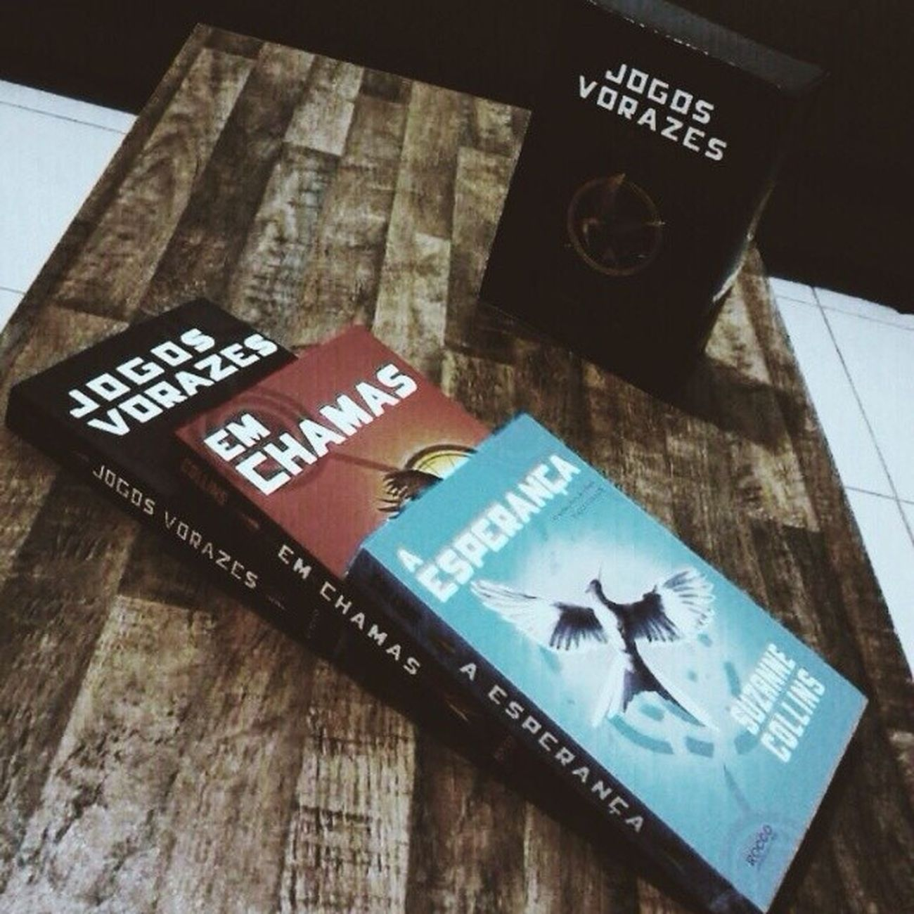 JogosVorazes TheHungarGames Emchamas Catchingfire AEsperanca Mockingjay Book Perfect Loved Beautiful Tribute SuzanneCollins Brazil lfl