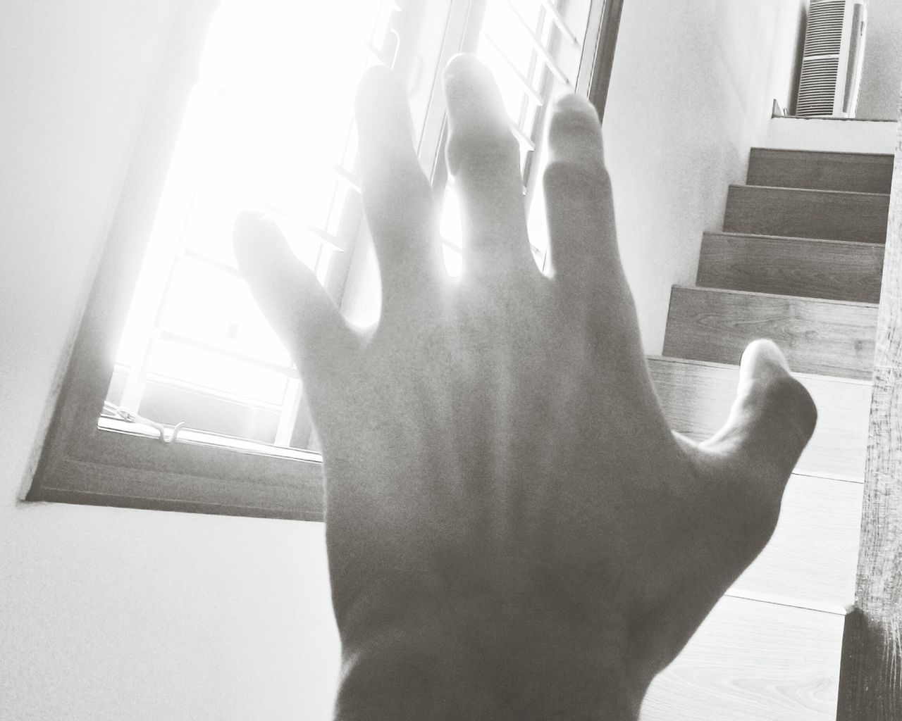 Black And White Light And Shadow My Hand  Lazy Day Sunlight