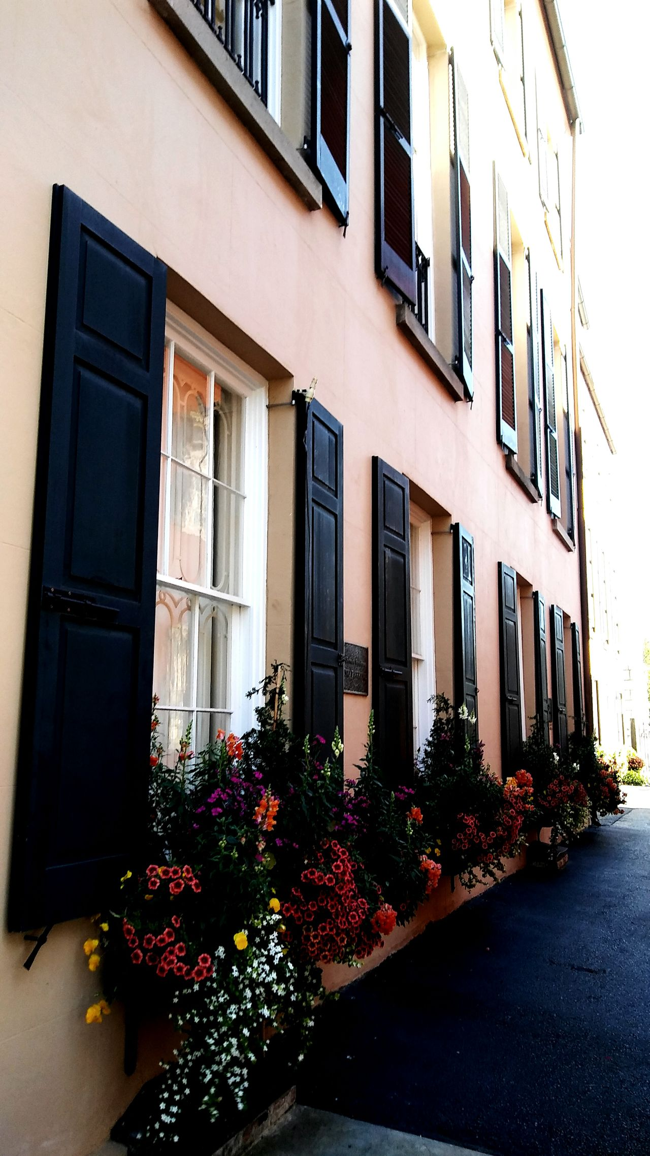 Downtown Charleston Architecture Built Structure Old-fashioned Building Exterior NewToEyeEm The Low Country South Carolina Southern Charm Travel The Street Photographer - 2017 EyeEm Awards