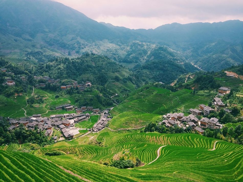 Beautiful stock photos of china, Agriculture, Architecture, Beauty In Nature, Building Exterior