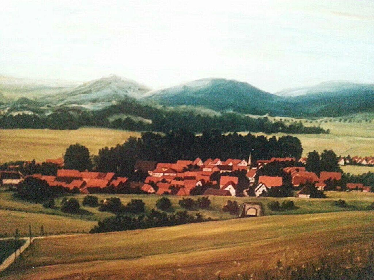 Blick auf Herrhausen . Oil on canvas 70 x 100 cm 1983 Art Painting Village Landscape Trees Houses Grass Nature Mountains Summer ☀