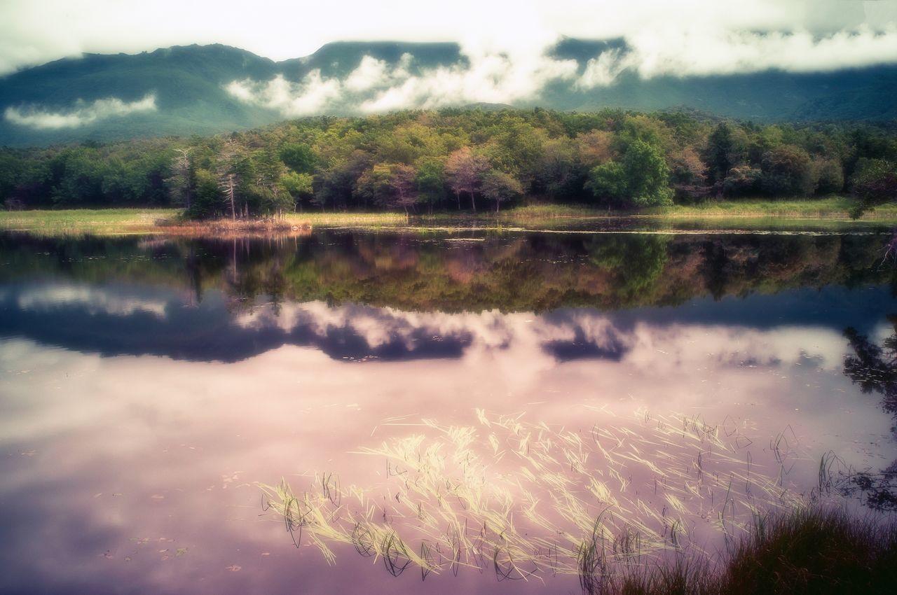 Pond Shiretoko Shiretoko Goko Surface Reflection Woods Landscape Nationalpark Hokkaido Japan Ricoh GXR Super Angulon 21mm