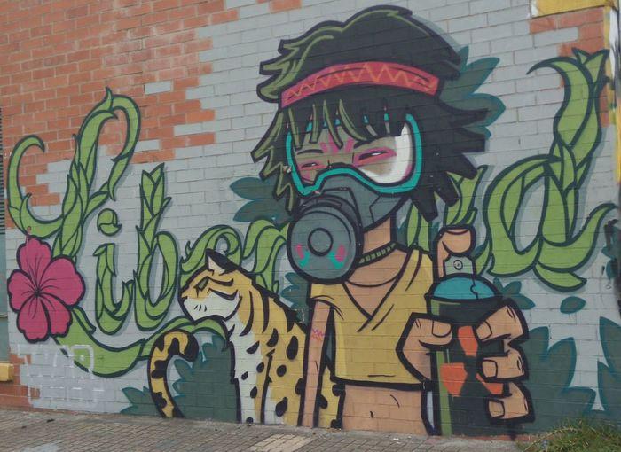 Graffiti Bogota, Colombia