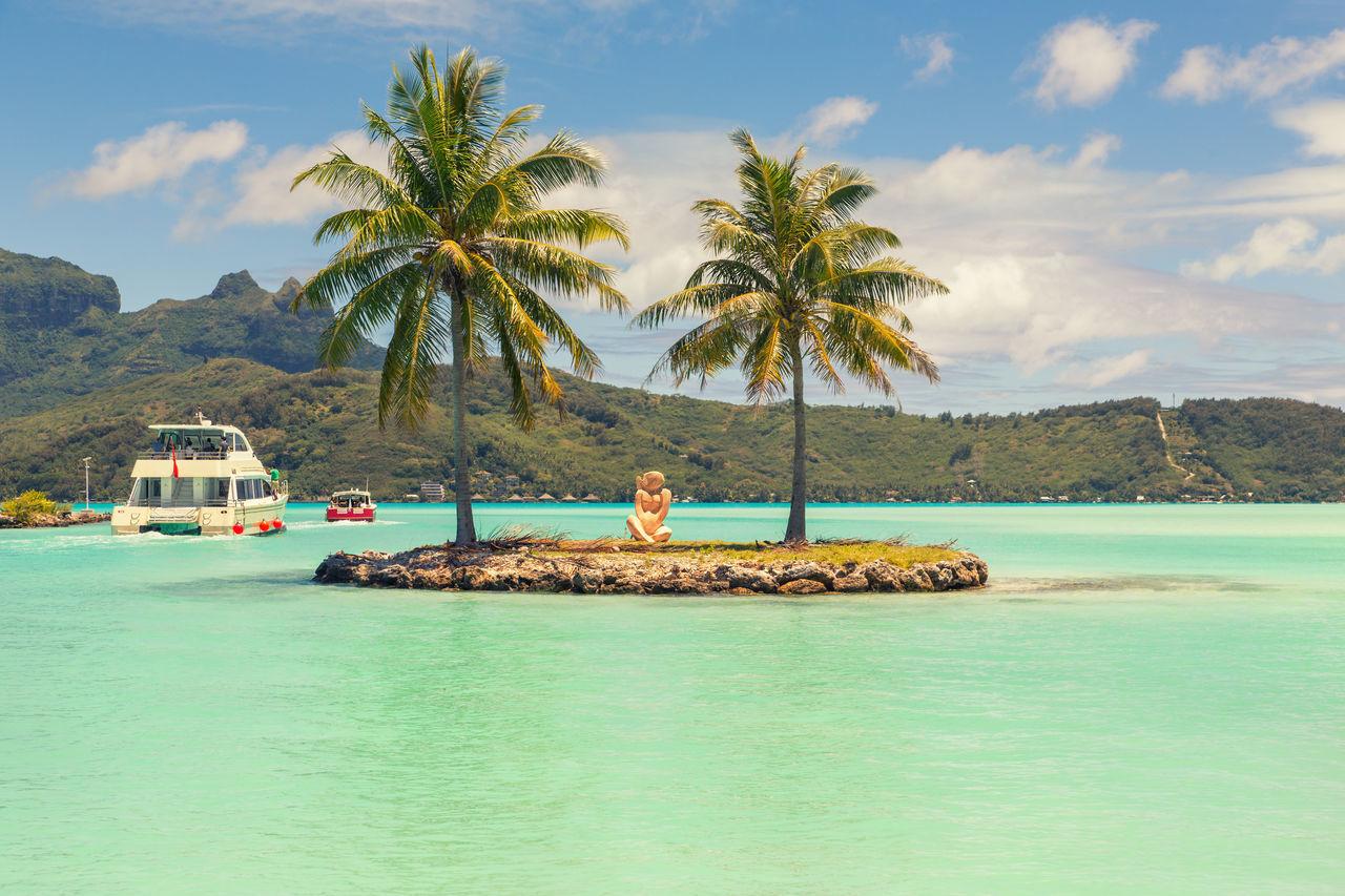 Beautiful stock photos of bora bora, tree, vacations, water, travel