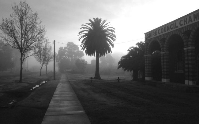 Foggy Morning IPhoneography Don't Be Square Blackandwhite