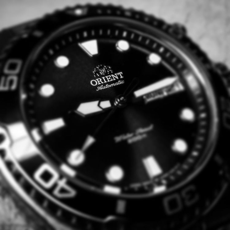 Watch Watches Black And White Orient Ray Macro