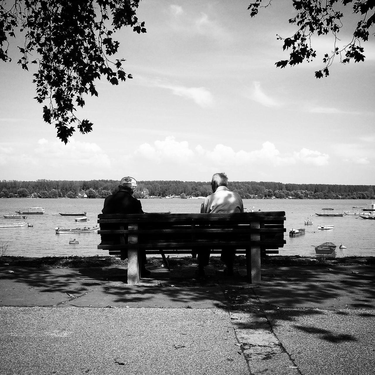 Beautiful stock photos of old, Bench, Boat, Branch, Day