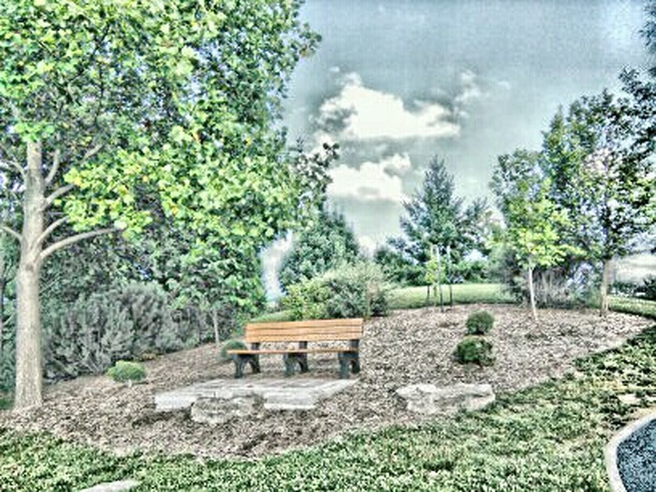 Lonely little bench New On Market EyeEm Gallery Still Life Popular TRENDING  Film EyeEm Week Eyeem Trending My Point Of View Park Bench Park Life Showcase June