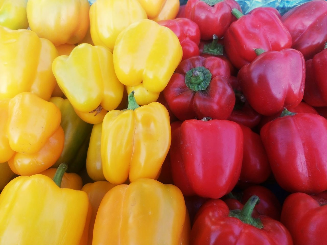 Healthy Eating Food Food And Drink Freshness Healthy Lifestyle Market Vegetable No People Variation Red Bell Pepper Full Frame Red Backgrounds Day Multi Colored Close-up Indoors  Nature Supermarket