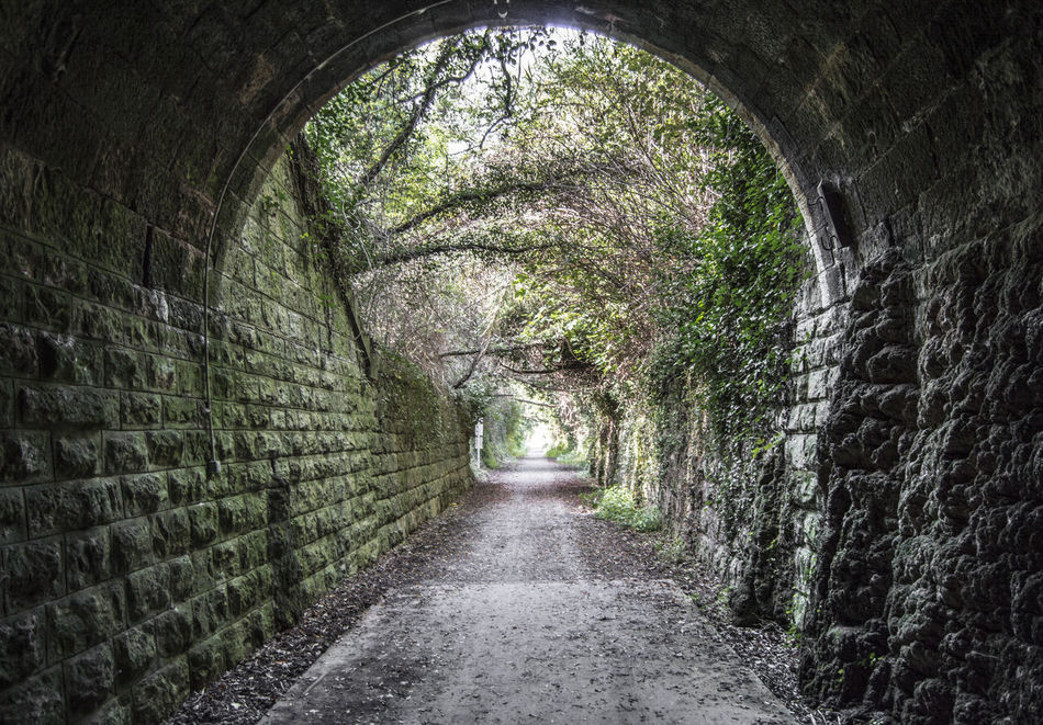 Caudiel Tunnel Arch Archway Built Structure Castellón Caudiel Day Diminishing Perspective Empty Footpath Green Color Growth Narrow Nature No People Pathway Plant SPAIN The Way Forward Tranquility Tree Tunnel València Vanishing Point Walkway