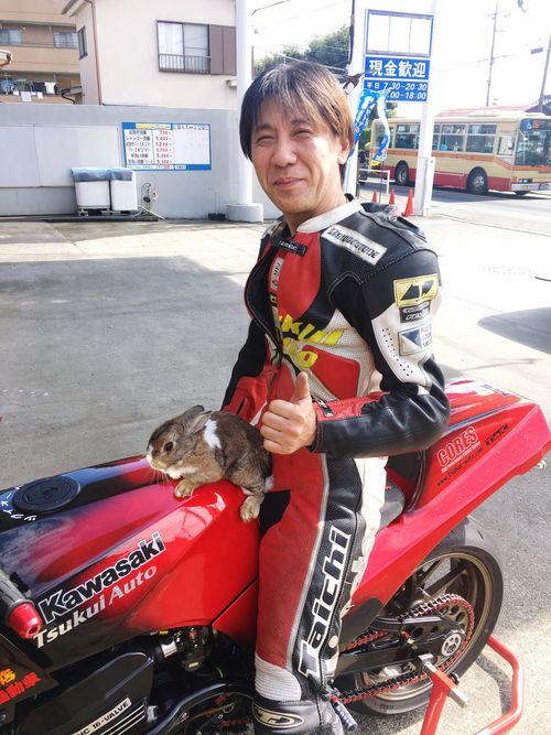 Rabbit kawasaki One Person Looking At Camera Transportation Portrait Full Length Lifestyles Real People Outdoors Mature Adult Motorcycle Standing Leisure Activity Day Domestic Animals Animal Themes People Japan Kawasaki Ninja Gpz