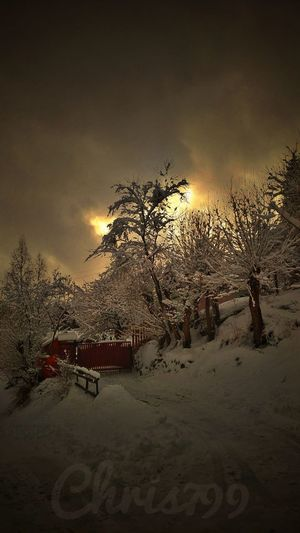 Outdoors Sunset Sky Nature No People Night Beauty In Nature Snow Covered White Color Winter Day Snow Cold Temperature Winter Vintage Photography Mountain Landscape Sunset And Clouds  Sunrise - Dawn Cloud - Sky Tree Fir Tree Trees And Sky Tree Trunk
