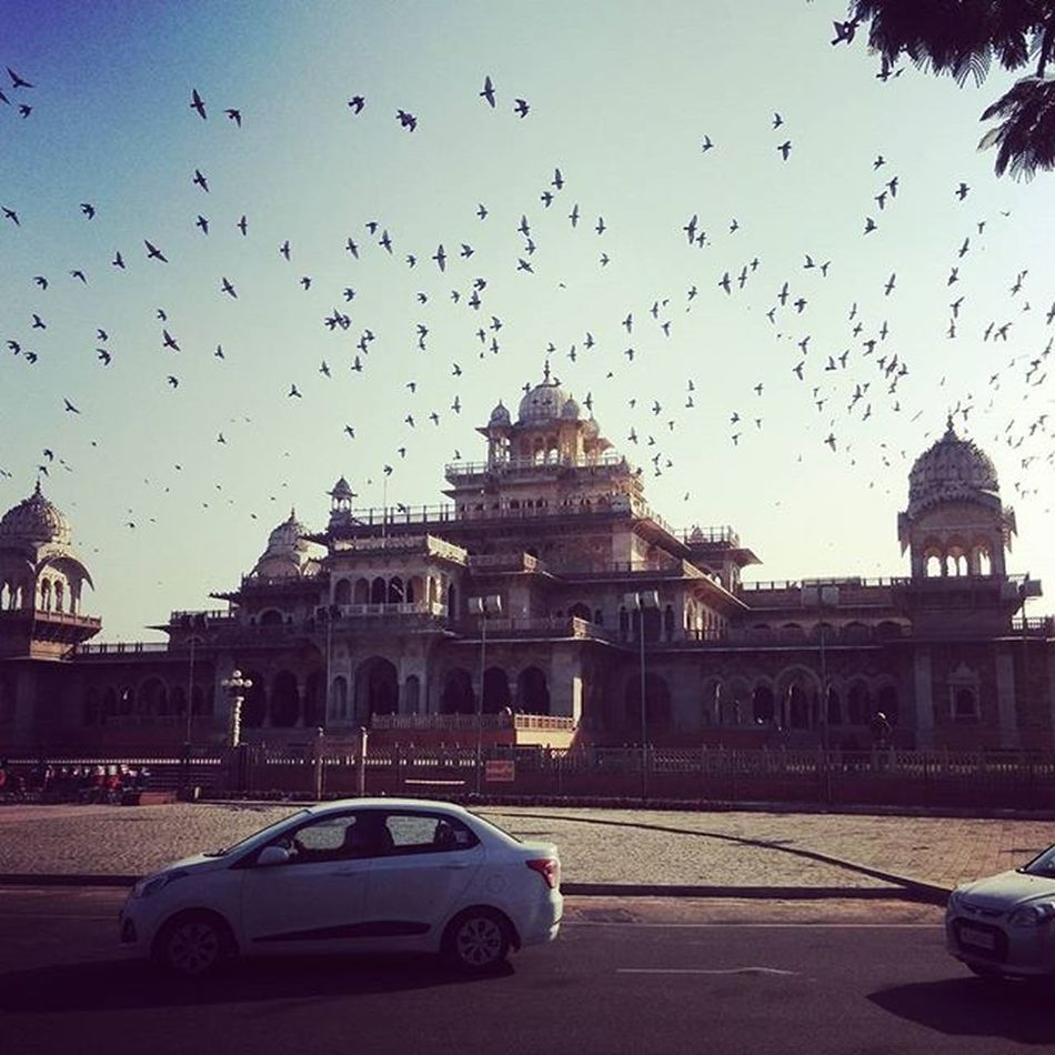 Behind these majestic exteriors lies a plethora of history in myriad forms for the generations to come ! Trip2 Traveldiaries Lifeinpictures Myphotodiary Rangeelorajasthan Beautifuljaipur Hues IgersRajasthan Incredible India_gram Indiapictures Beautifulindia Snaptheday Zostel Soi_india Experienceindia Padhaaromeredes Instagram Tourist Mytraveldiaryblog
