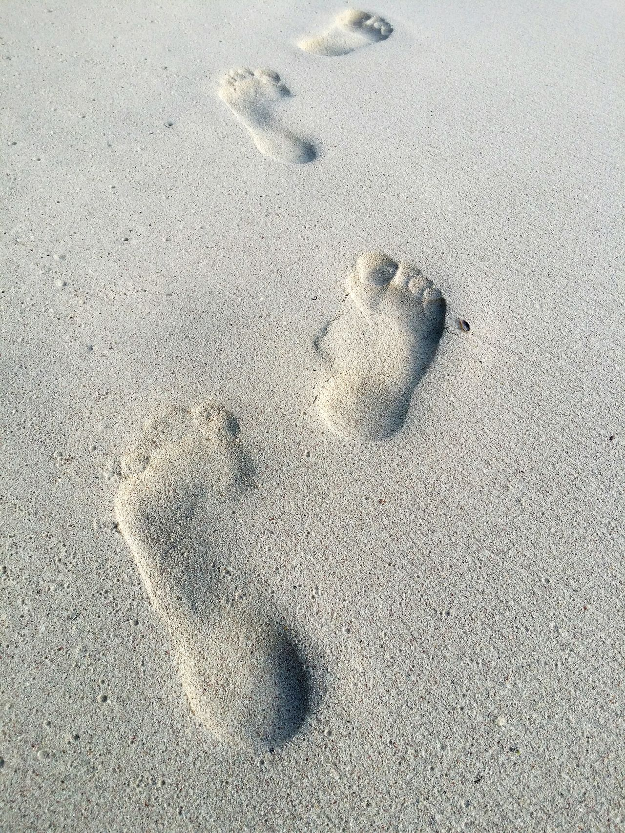 Beautiful stock photos of sand, Absence, Day, Direction, Footprint