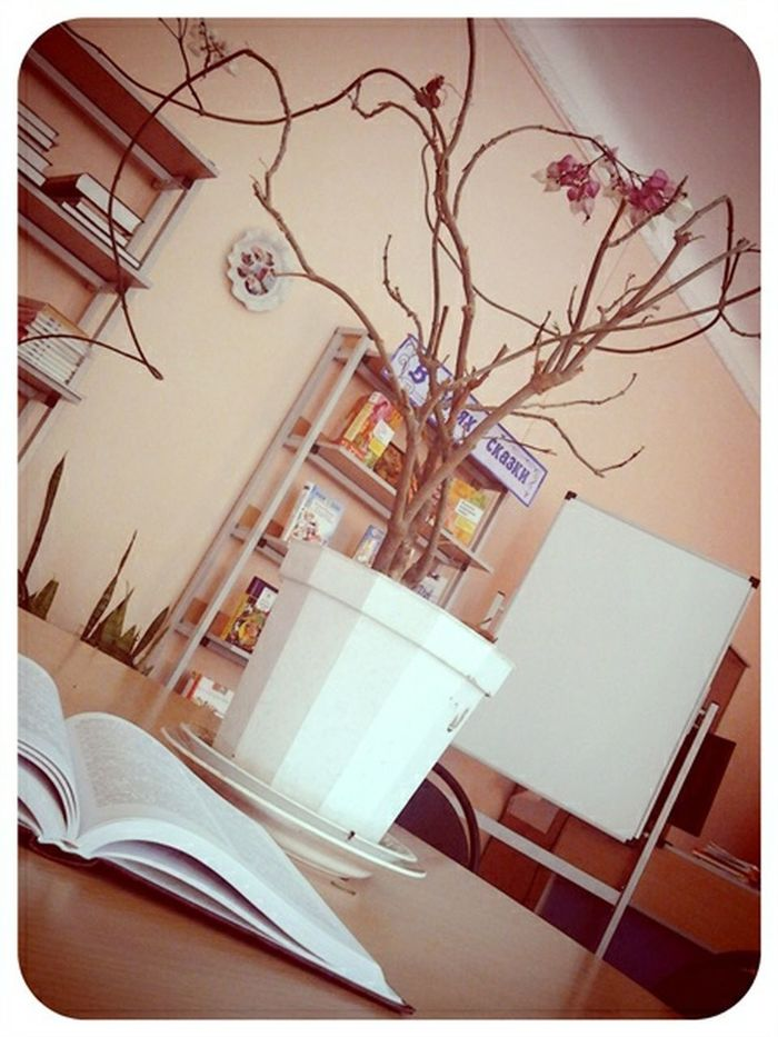 Flowers Book книга библиотека Literature