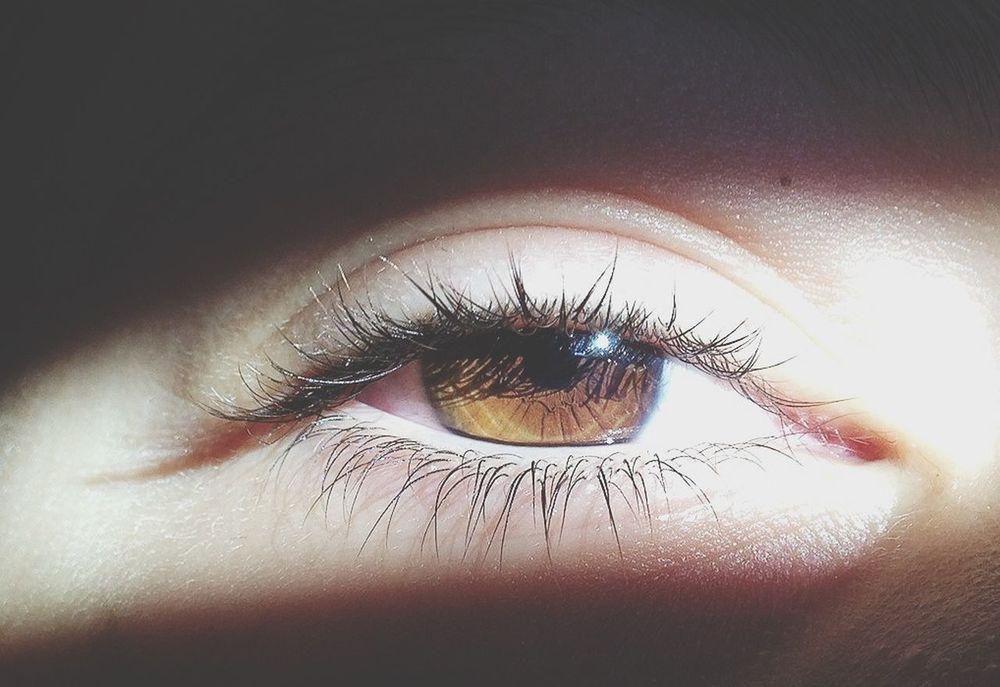 Eyes Hazel Eyes  Phoyooftheday IPhoneography