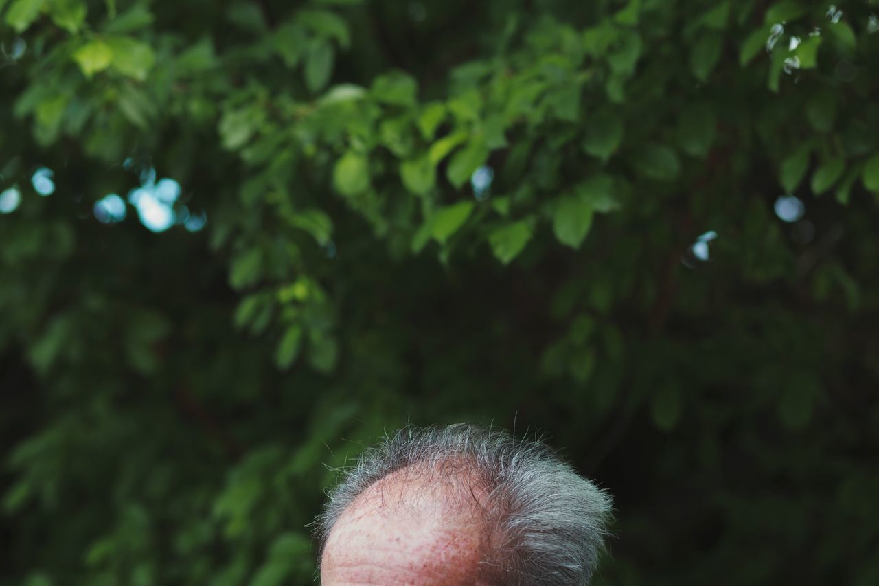 Tree One Person Human Body Part Outdoors Forest Close-up Nature Day People One Man Only Freshness Adult Only Men Adults Only Bald Man Old Garden Spring Springtime Summer The Week On EyeEm