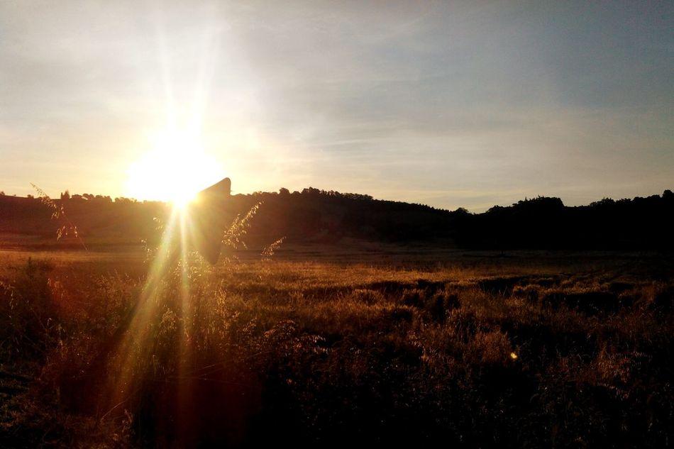 Enjoying The Sights Walking Take A Break Nature Belpaese Sunrise Promessa Enjoying The Sun