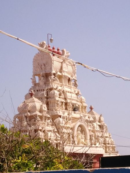 Tiruchendur temple tower Architecture Built Structure Business Finance And Industry Day Travel Destinations Outdoors Place Of Worship