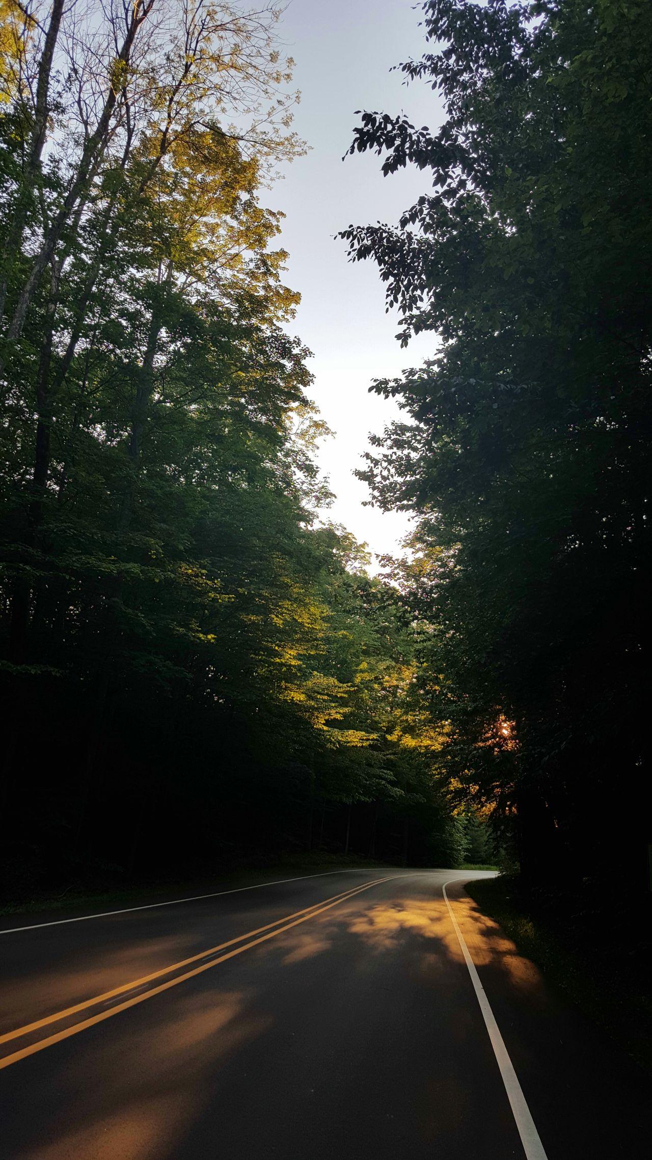 Scenic Drive Mein Automoment Road Forest Sunlight Summer Non Urban Scene No People Sleeping Bear National Lakeshore Michigan