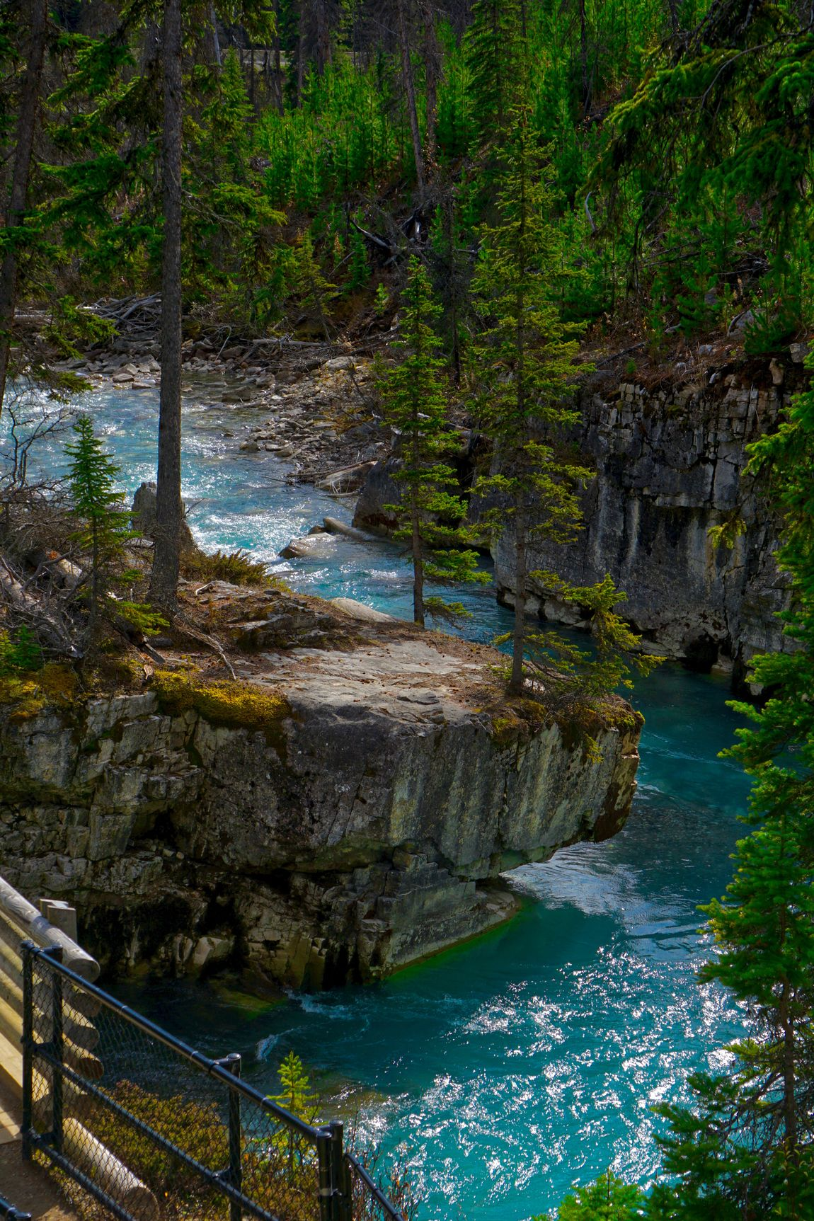 Teal Waters of Marble Canyon Beauty In Nature Canyon Day Eco Tourism Forest Landscape Nature Nature Reserve No People Outdoors River Rock Formation Scenics Teal Water Tree Vacations Water Waterfall